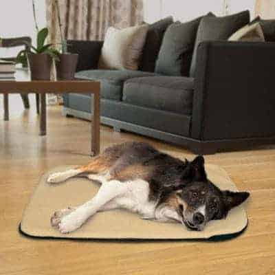 Sunbeam Is One Of The Industry Leaders In Human Electric Pads So Not Surprisingly They Have A Heated Pet Mat It Comes 2 Sizes 14 L By 28 W Or 27